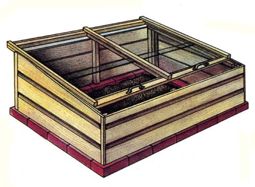Uprawa w inspektach lub niskich namiotach foliowych